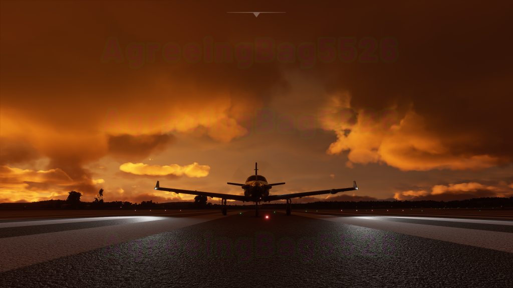 MS Flight Simulator 1