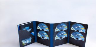 Microsoft Flight Simulator 2020 płyty