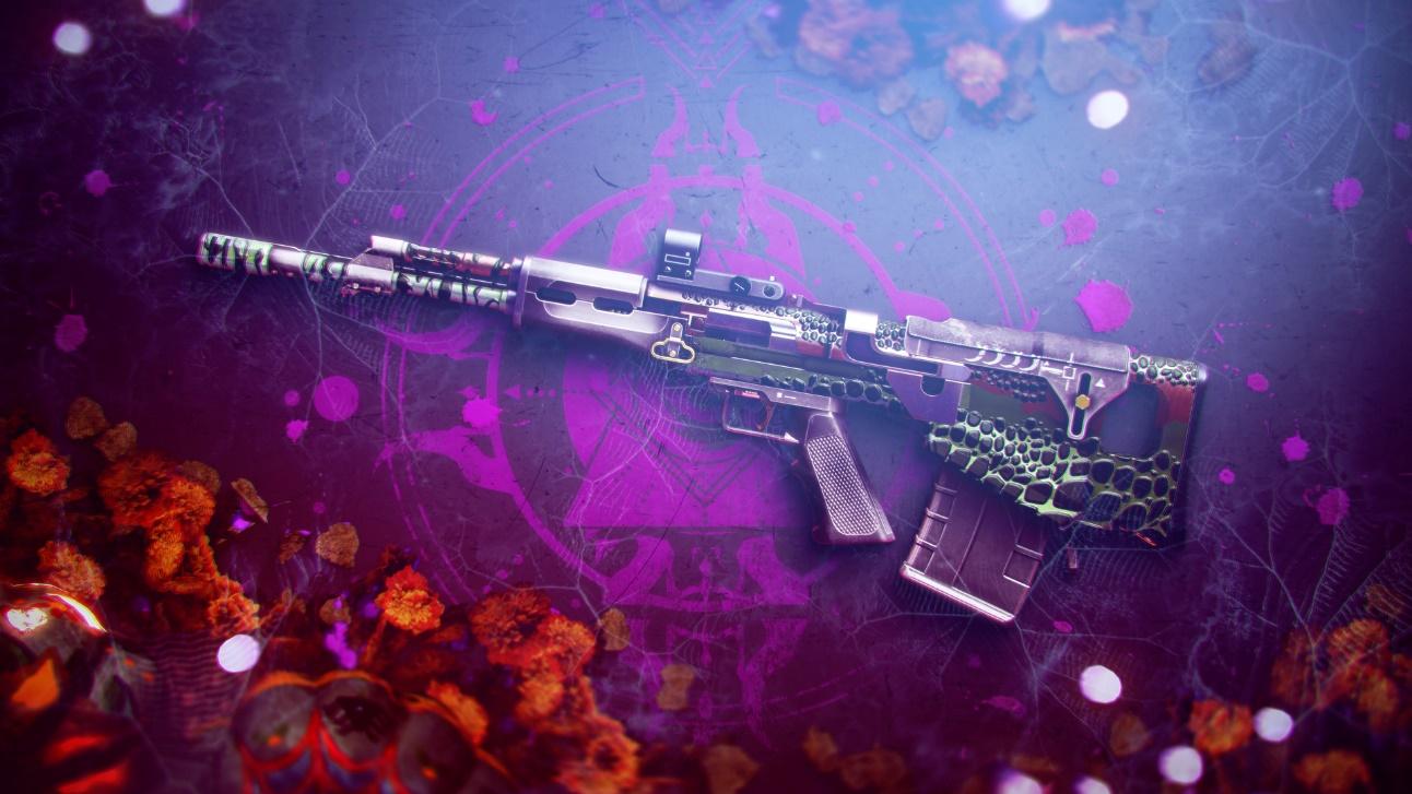 destiny 2 - gun